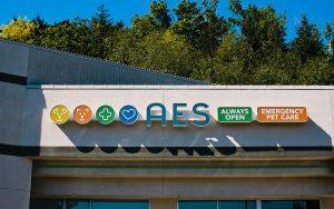24-hour Emergency Vet Hospital in Kirkland, WA