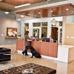Emergency Vet Clinic in Kirkland, WA